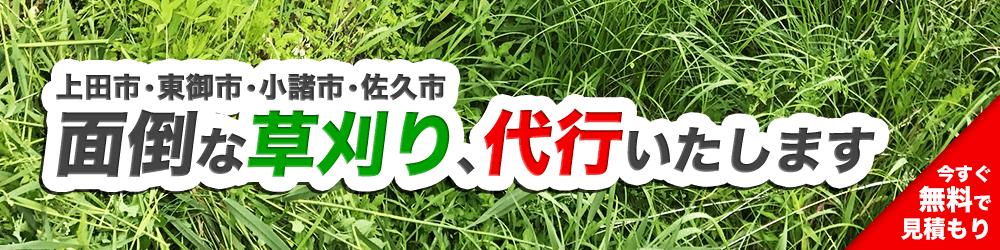 上田市・東御市・小諸市・佐久市の面倒な草刈り、代行いたします!見積もりはこちら