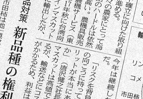 日本経済新聞に果物の輸出への取り組みについてご掲載いただきました