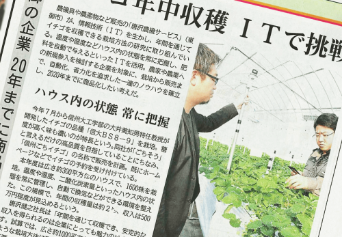 信濃毎日新聞に弊社農業事業部が栽培するイチゴについてご掲載いただきました