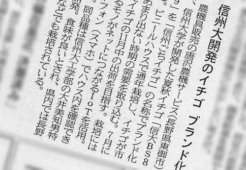 日本経済新聞に、信州大学が開発したいちごのブランド化についてご掲載いただきました
